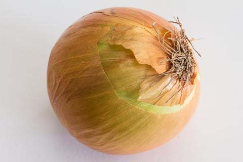 "The onion. The Dutch for ""the onion"" is ""de ui""."