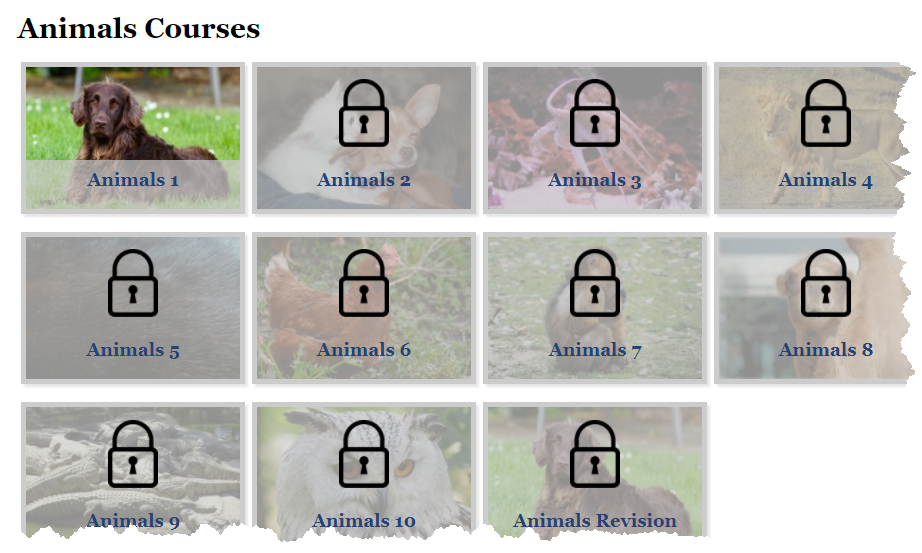 Animals Courses