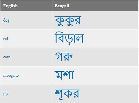 Example Bengali script